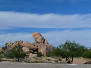 Rest area near Arizona/New Mexico border