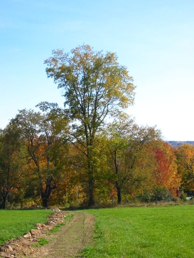 Geauga County Ohio