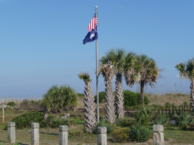 US and South Carolina flags, palmetto trees behind the dunes