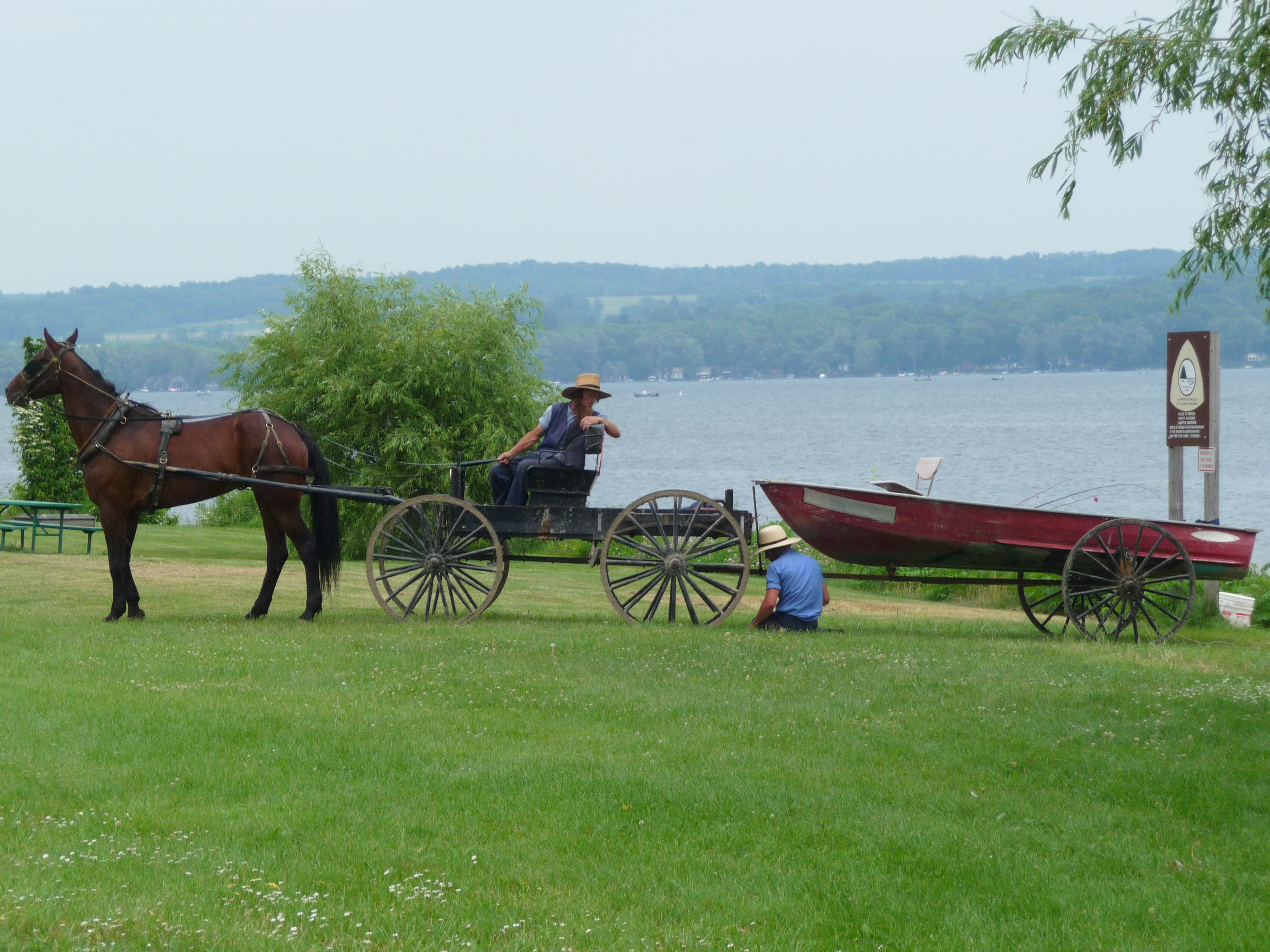 Bangin In The Buggy Pics Of Amish Girls Gone Wild